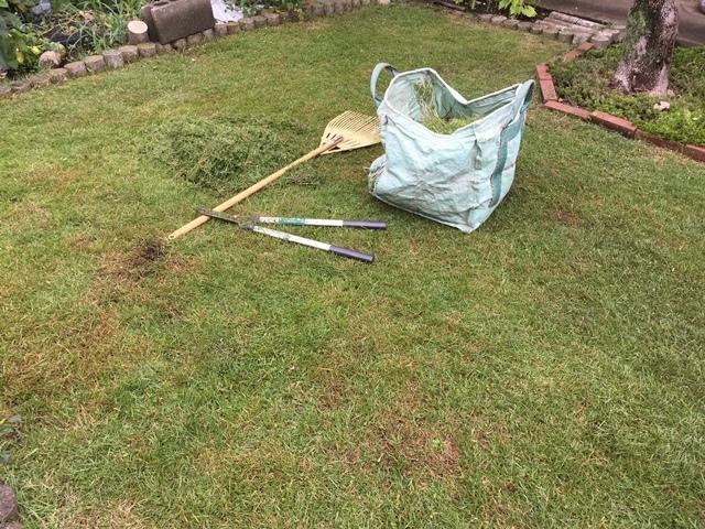 刈り込み終わった芝生の庭