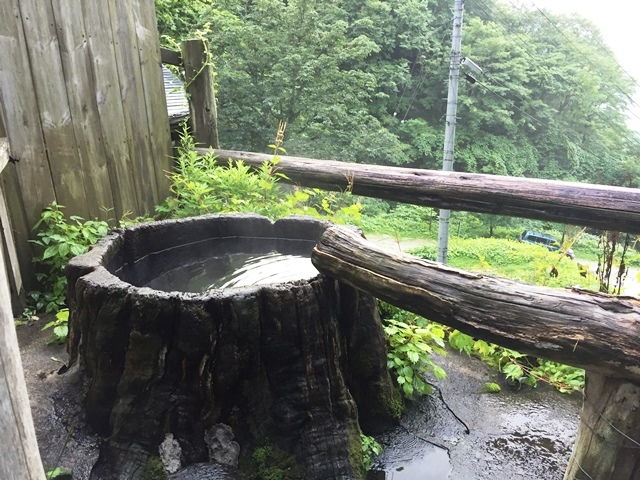 木の根の露天風呂