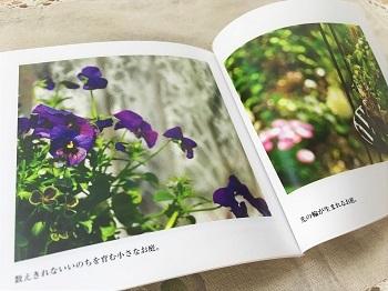 KONOHAの庭photobook (2)
