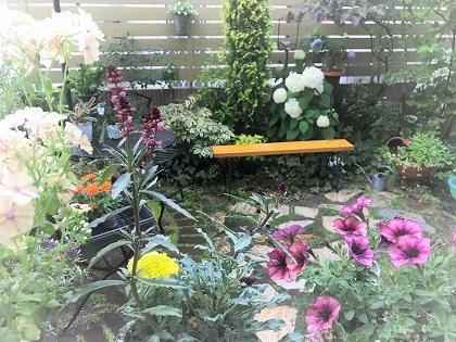 KONOHAの庭梅雨