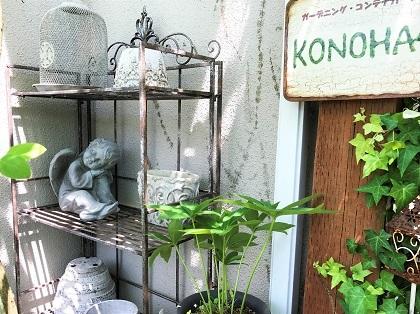 KONOHA_20170701093728c44.jpg