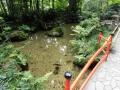 09真姿の池
