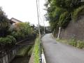 01野川と国分寺崖線
