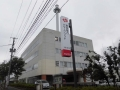 z25東電パワグリ