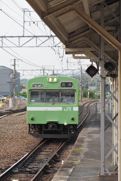 P5116165.jpg