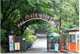 Unique_Campgrounds_in_Seoul3.jpg