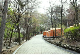 Unique_Campgrounds_in_Seoul4.jpg