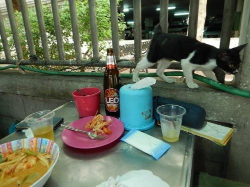 20170511bangkok2ndday (46)