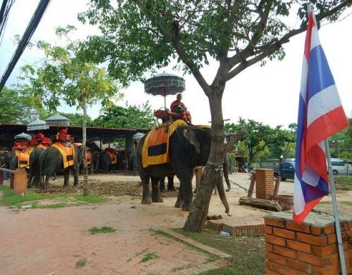 20170512ayutthaya (26)