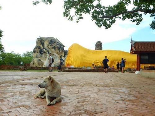 20170512ayutthaya (27)