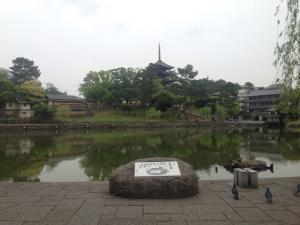 sarusawa0509_convert_20170509112245.jpg