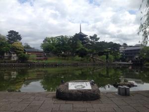 sarusawa0510_convert_20170510111110.jpg
