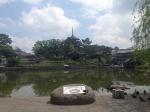 sarusawa0523_convert_20170523110656.jpg