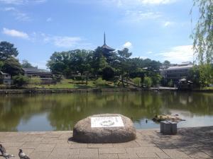 sarusawa0609_convert_20170609140148.jpg