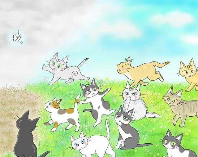 s-2018年度 猫友日めくりカレンダー ③-