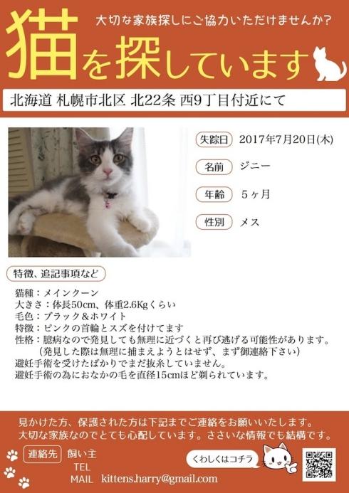 20170724-14maigo2迷子さん