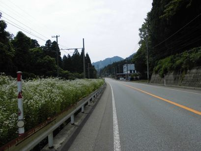 amiyama0709-3.jpg