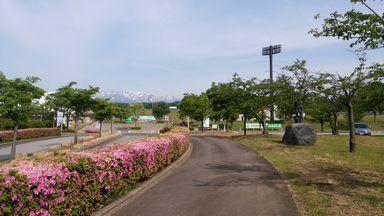 amomoyama0526-2.jpg