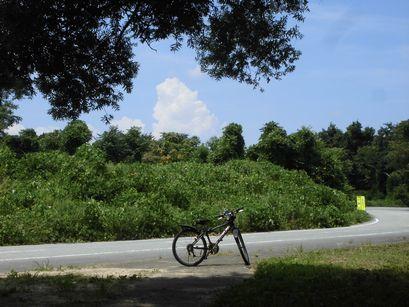auchiyama0806-10.jpg