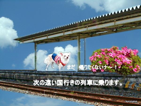 GEDC0141-004.jpg
