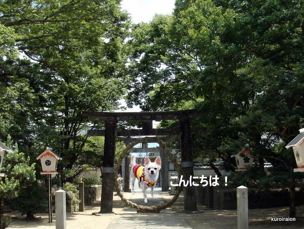 GEDC0169-001.jpg