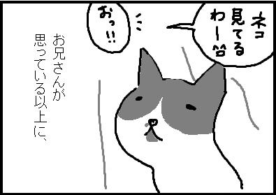 435-3.jpg