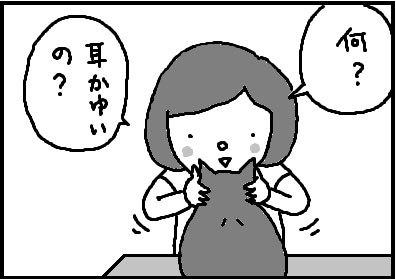 436-3.jpg