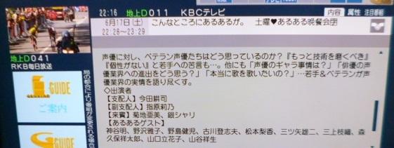P1160507.jpg