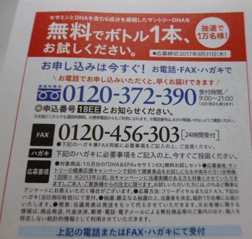 P1160799.jpg