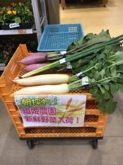 道の駅野菜2