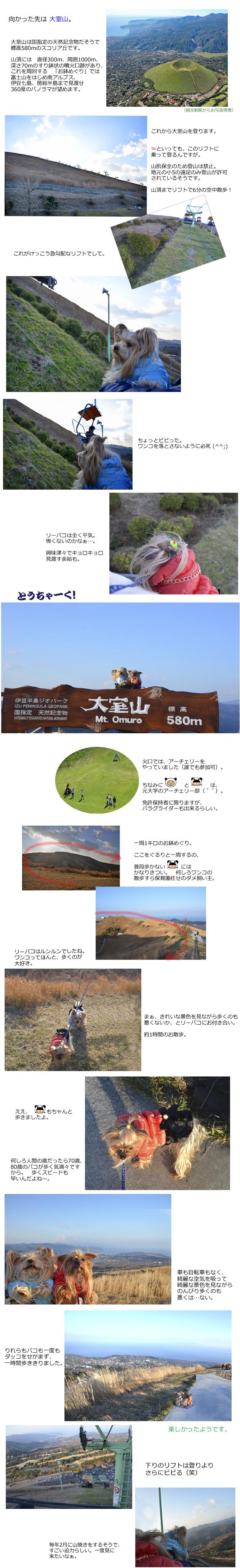 河津七滝(2016-2017)4日め(1月3日)② 大室山 のコピー