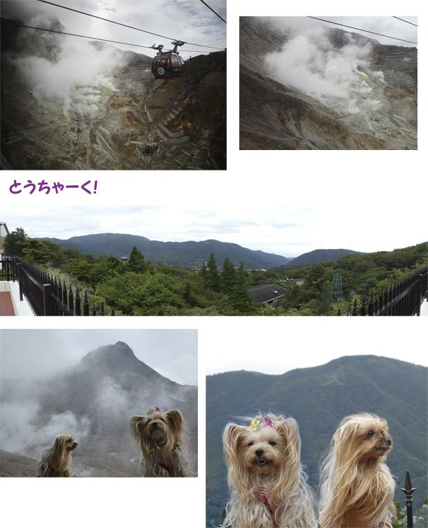 3日め③早雲山 のコピー