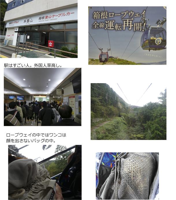 3日め②早雲山 のコピー