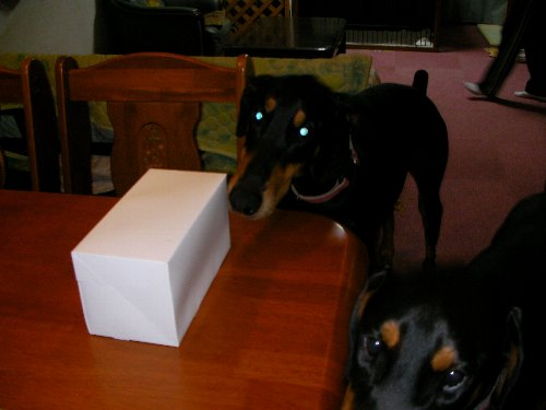 201705172110ケーキの箱①-1