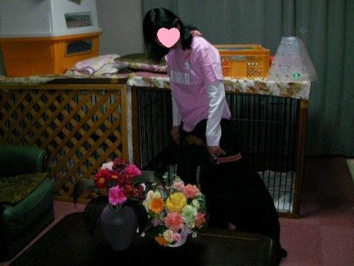201705172141アイリーン9才誕生日⑭-1