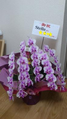 Nail & Color Salon  Stellaのブログ
