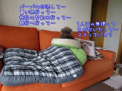 4I5ua2uJ_aNR_fc1501064739_1501064962.jpg