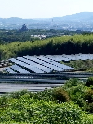 大岩山ソーラーパネル1706