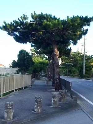 久米島歩道車止め1707