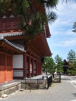 快晴の妙心寺1709