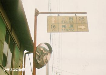 987-125-0uトイカメ篠山16