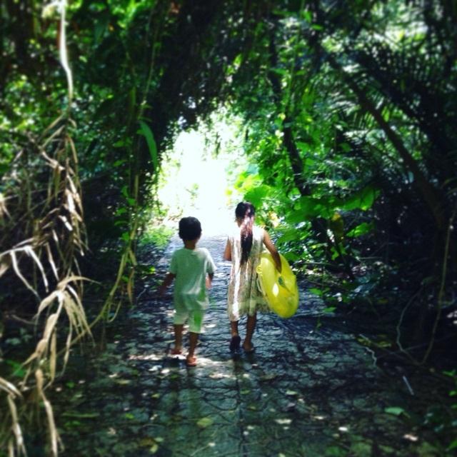 宮古島 来間島 ジャングル 原生林 トンネル