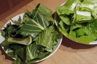 BL180109菜っ葉料理1IMG_0123