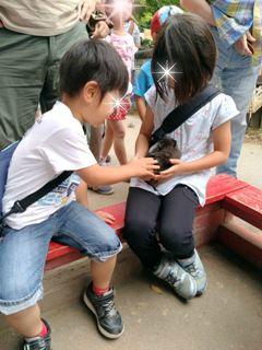 ブログ2 0619動物園 (1)