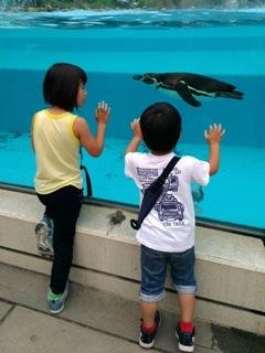 ブログ2 0619動物園 (3)