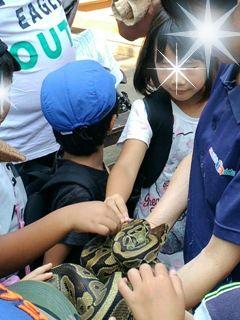 ブログ2 0911動物園 (1)