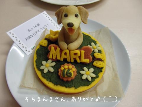 cake2_20170920074238044.jpg