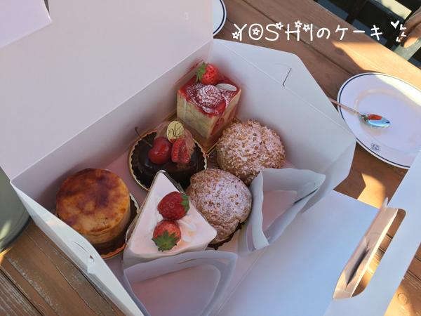 cake_20170517211303e0d.jpg