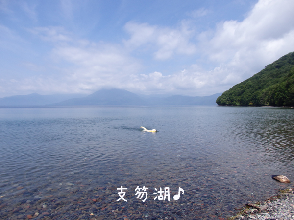 sikotuko_20170802220211c56.jpg