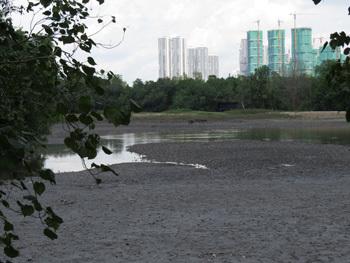 シンガポール18